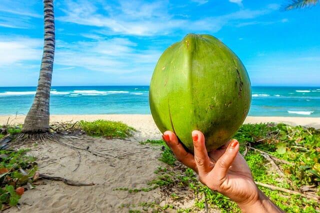 noix de coco et plage